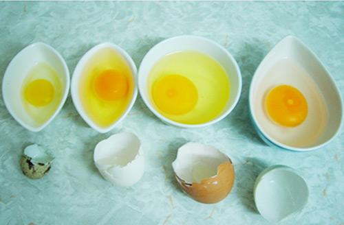 6 dại khi cho con ăn trứng - 1