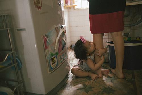 Bộ ảnh đầy sâu lắng về cuộc sống của gà mái chăm con - 11
