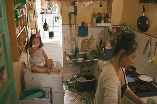 Bộ ảnh đầy sâu lắng về cuộc sống của gà mái chăm con - 12