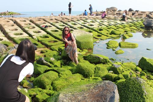 Bờ kè rêu xanh ở phú yên thành điểm tham quan kỳ lạ - 1