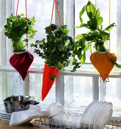 Tự làm vườn treo trồng rau trong bếp