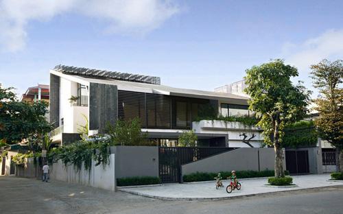 Biệt thự hà nội sừng sững cây xanh giữa nhà - 1