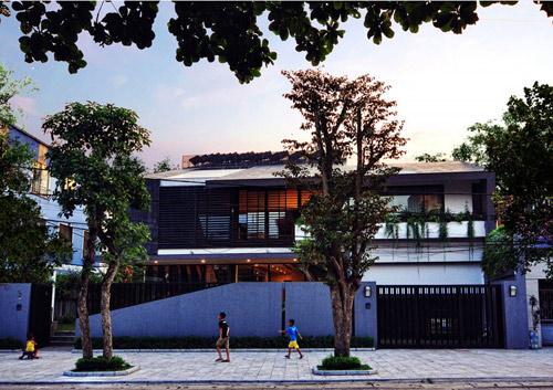 Biệt thự hà nội sừng sững cây xanh giữa nhà - 2