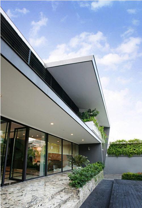 Biệt thự hà nội sừng sững cây xanh giữa nhà - 5