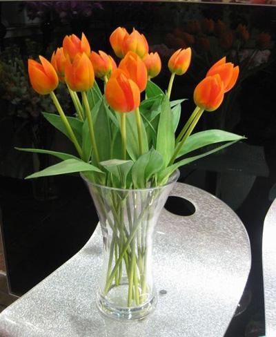 Bình hoa tulip đem mùa xuân vào nhà - 4