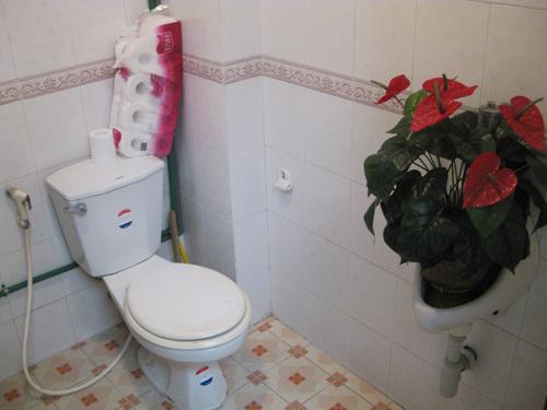 Chàng úc choáng với nhà vệ sinh kiểu việt nam - 2