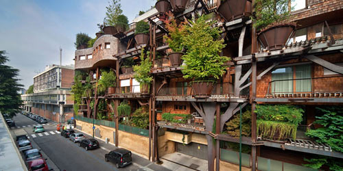 Mướt mắt nhà 5 tầng trồng 150 chậu cây xanh - 3