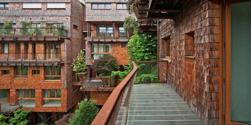 Mướt mắt nhà 5 tầng trồng 150 chậu cây xanh - 4