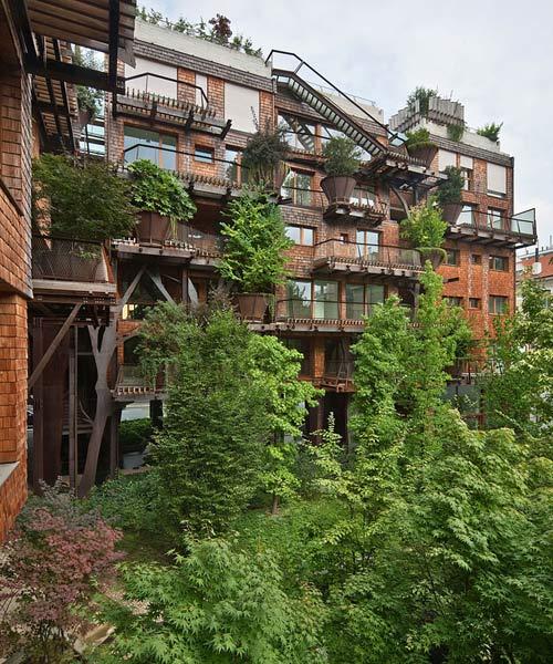 Mướt mắt nhà 5 tầng trồng 150 chậu cây xanh - 7
