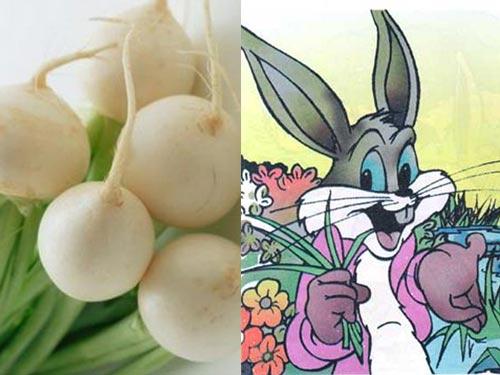 Truyện cổ tích chú thỏ và núi củ cải - 1