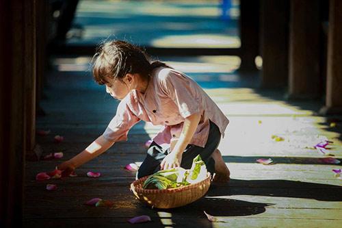 Vẻ đẹp trong trẻo của bé gái hà thành bên sen đầu mùa - 4