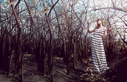 Võ hoàng yến đẹp xuất thần giữa rừng hoang - 3