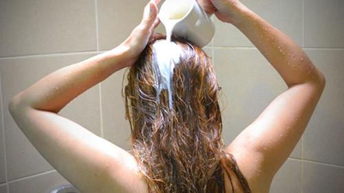 Hướng dẫn làm mặt nạ dưỡng tóc từ sữa và trứng