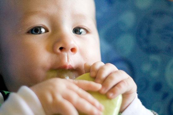 Mẹo bảo quản bơ trữ cả năm vẫn tốt cho bé ăn dặm - 2