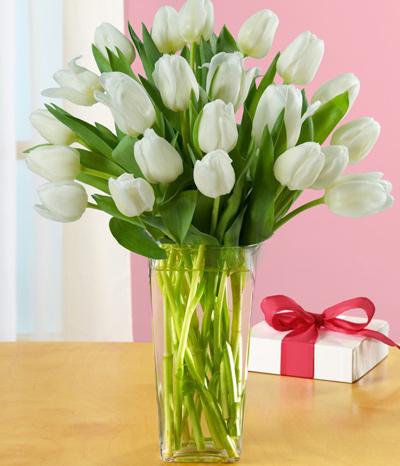 Đủ kiểu cắm hoa tulip dễ nhưng đẹp sang trọng - 1