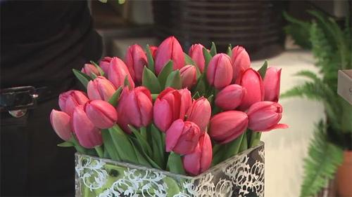 Đủ kiểu cắm hoa tulip dễ nhưng đẹp sang trọng - 3
