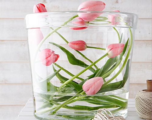 Đủ kiểu cắm hoa tulip dễ nhưng đẹp sang trọng - 5
